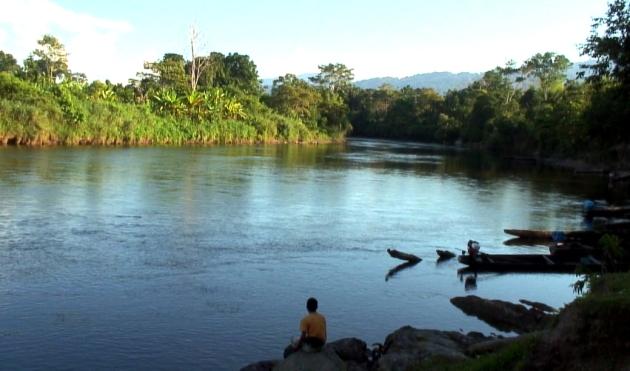 rio comaina